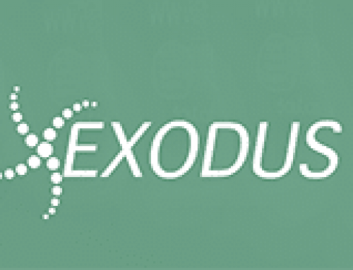 Exodus looking for a Sales Executive
